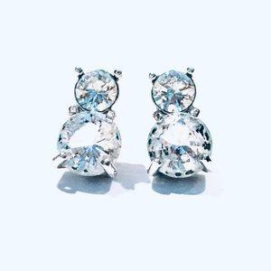 Swarovski Rhodium-plated Clear Crystal Earrings